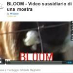 video_Bloom2010